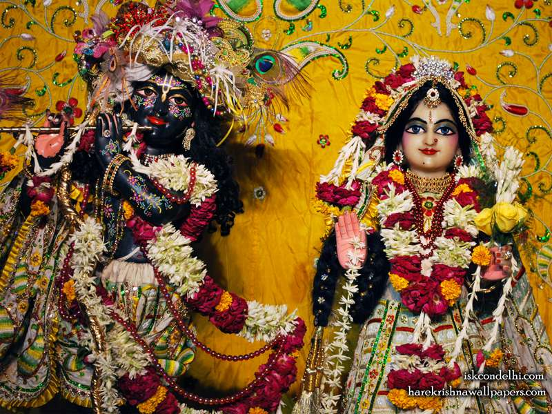 Sri Sri Radha Parthasarathi Close up Wallpaper (010)