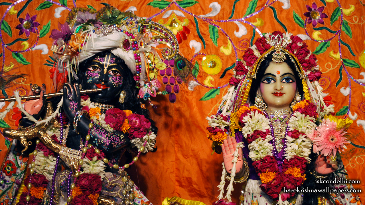 Sri Sri Radha Parthasarathi Close up Wallpaper (012) Size1280x720 Download