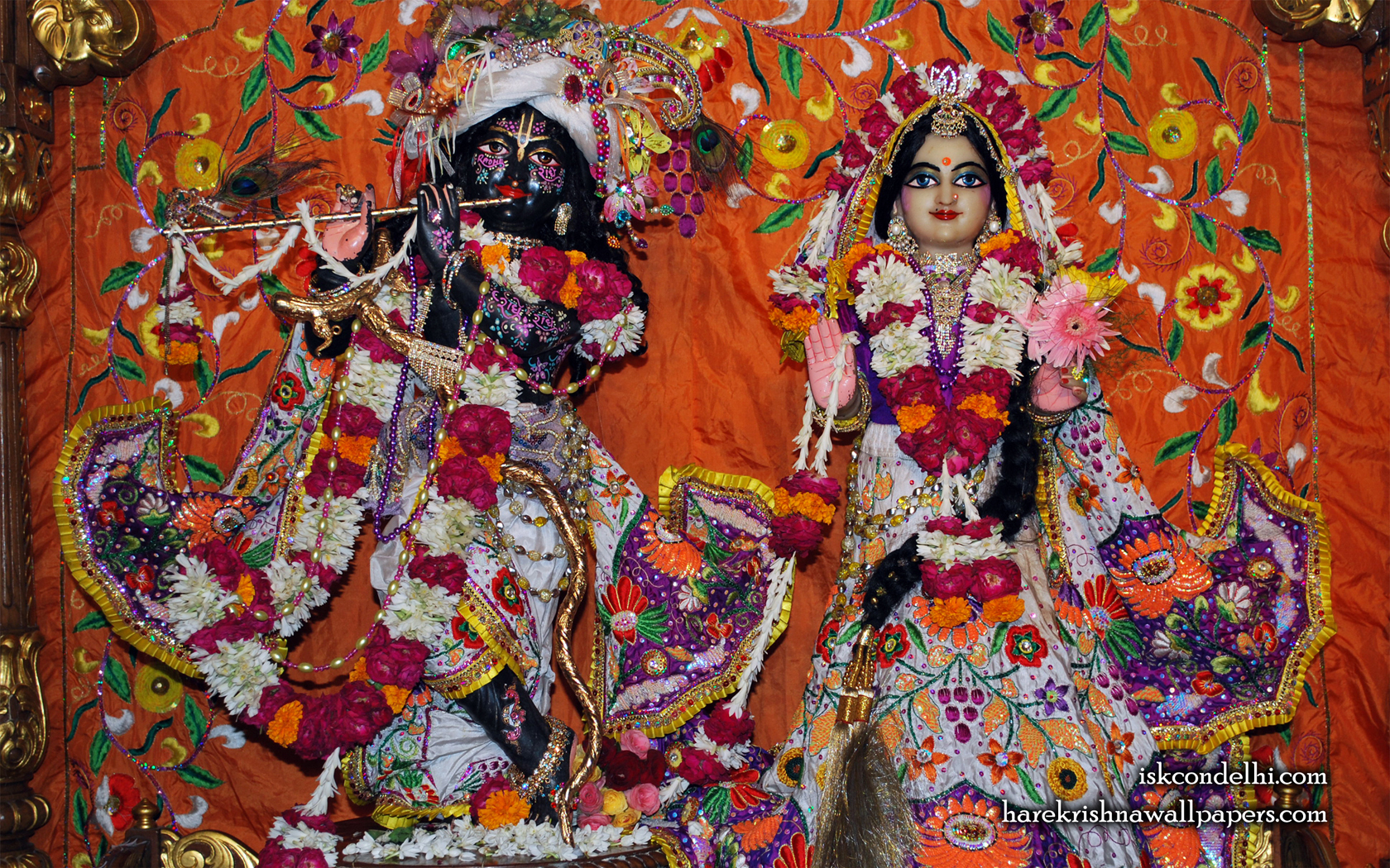 Sri Sri Radha Parthasarathi Wallpaper (013) Size 1680x1050 Download
