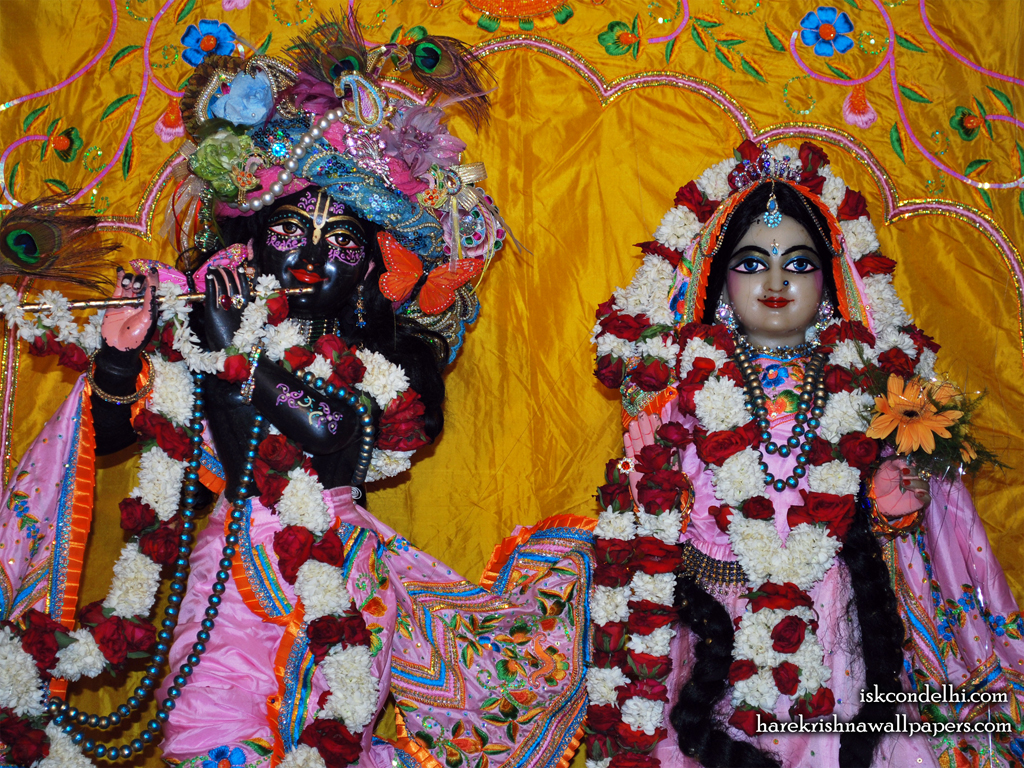 Sri Sri Radha Parthasarathi Close up Wallpaper (013) Size 1024x768 Download
