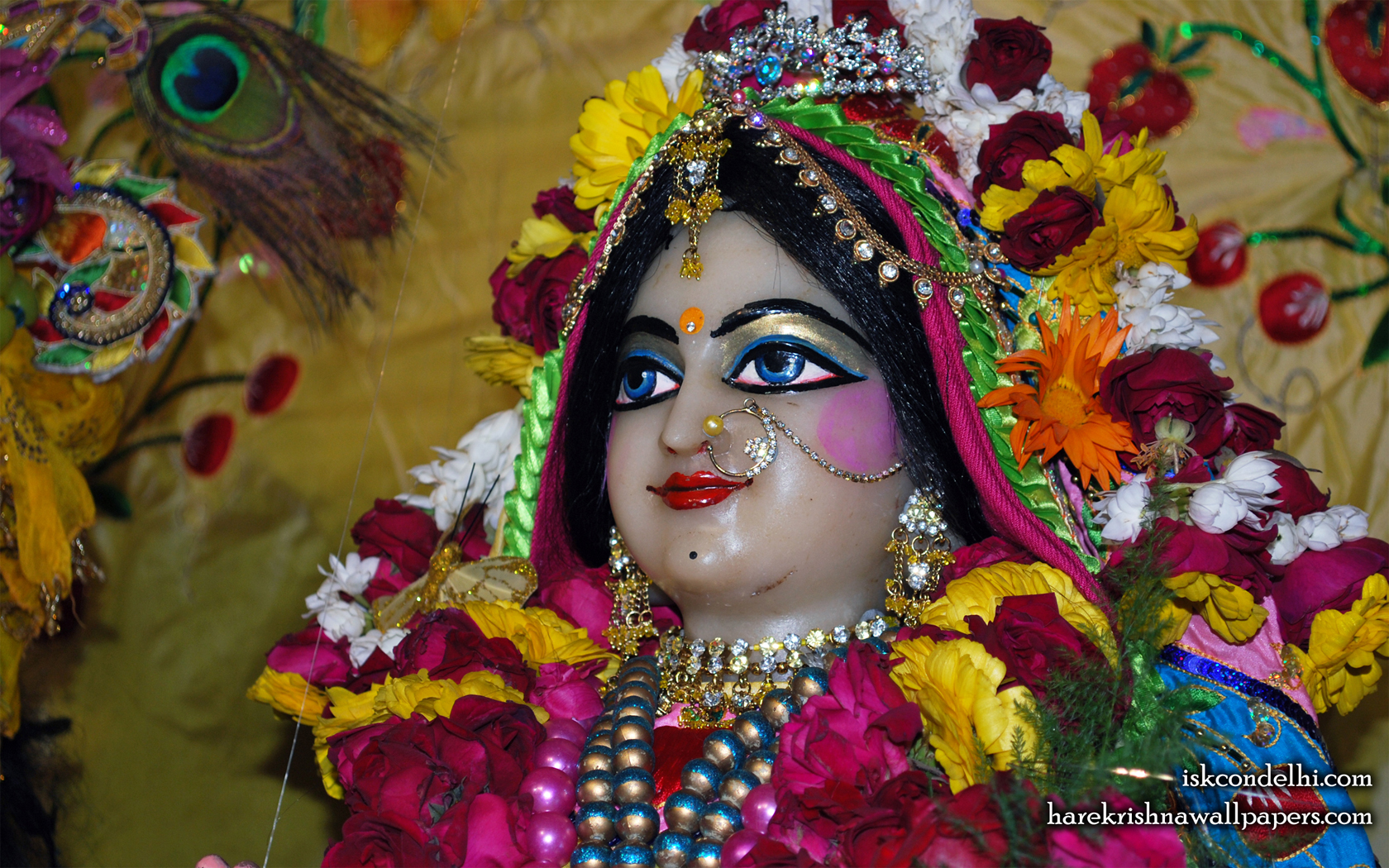 Sri Radha Close up Wallpaper (014) Size 1680x1050 Download