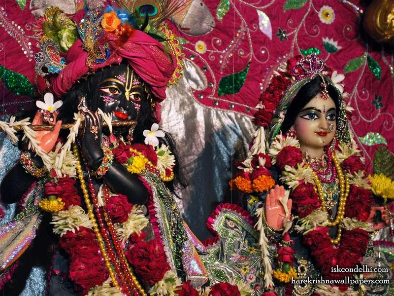 Sri Sri Radha Parthasarathi Close up Wallpaper (014)