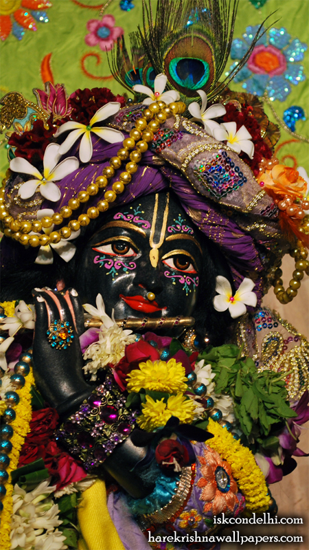 Sri Parthasarathi Close up Wallpaper (015) Size 450x800 Download