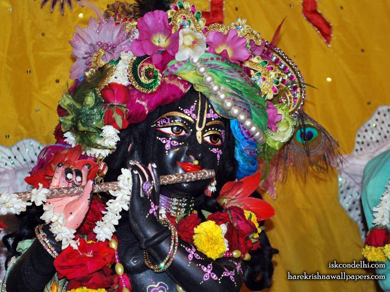 Sri Parthasarathi Close up Wallpaper (016)