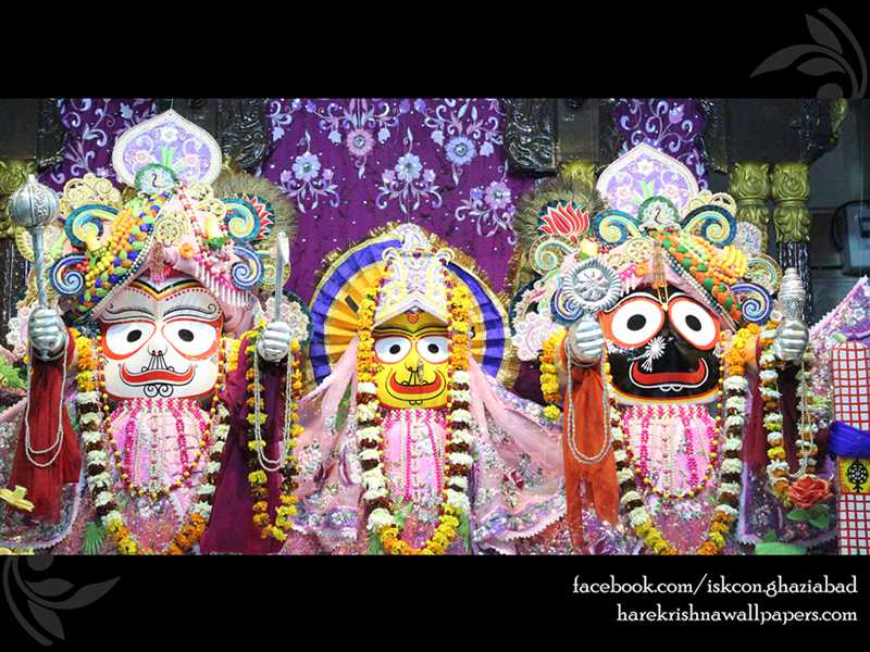 Jagannath Baladeva Subhadra Wallpaper (004)