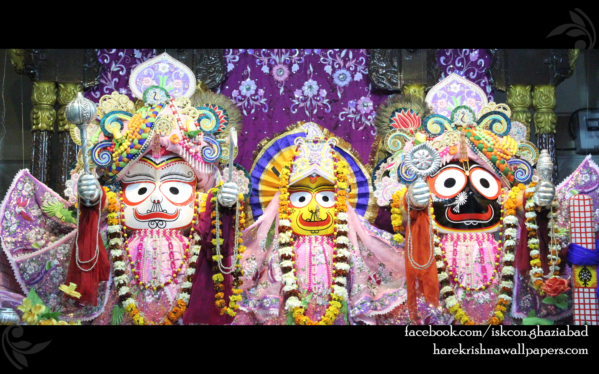 Jagannath Baladeva Subhadra Wallpaper (004) Size 1920x1200 Download
