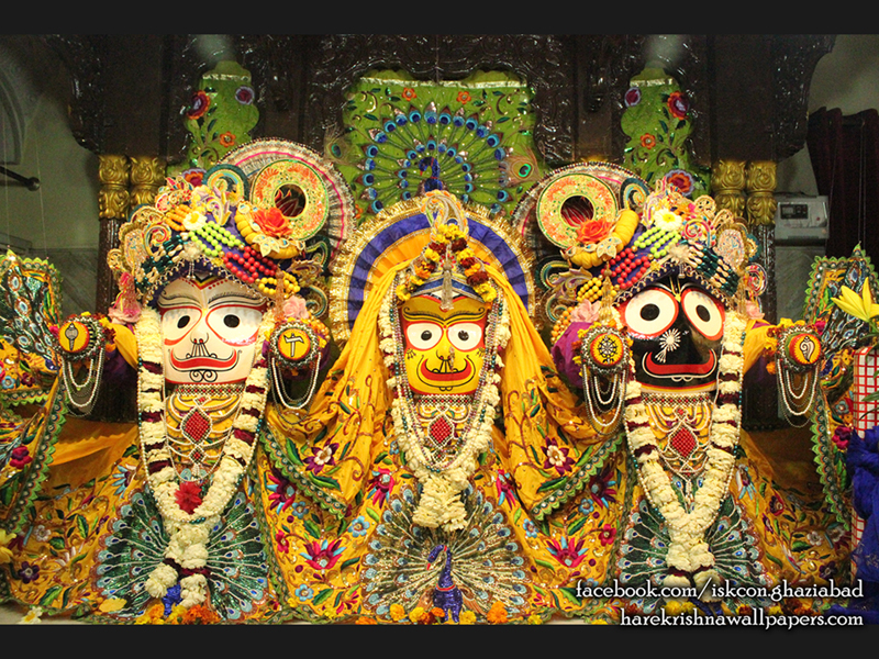 Jagannath Baladeva Subhadra Wallpaper (008) Size 800x600 Download