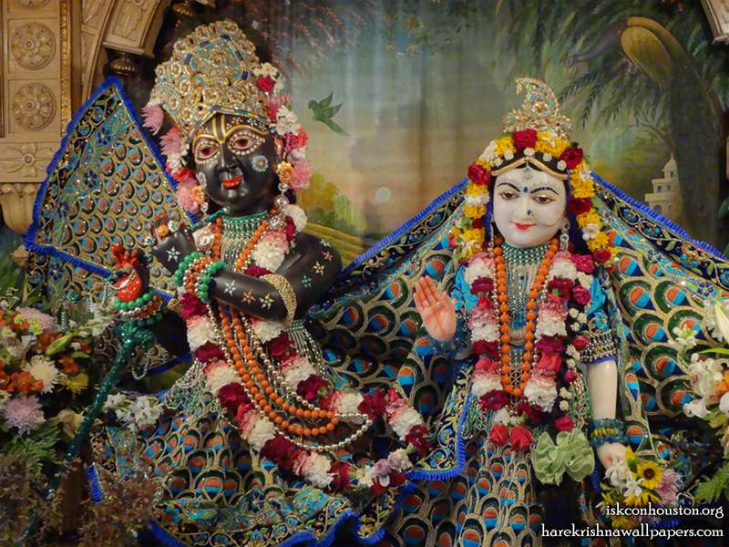 Sri Sri Radha Nilamadhava Close up Wallpaper (002)