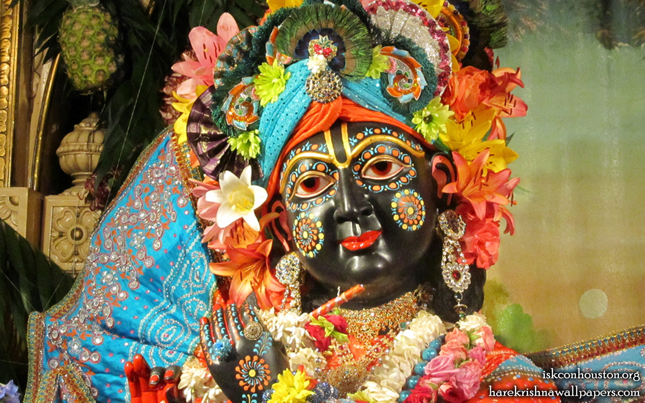 Sri Nilamadhava Close up Wallpaper (004) Size 1280x800 Download