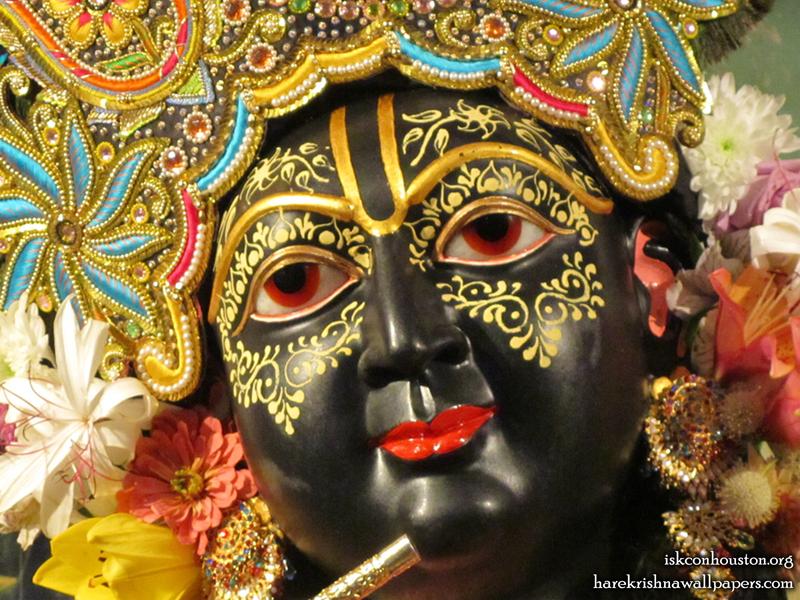 Sri Nilamadhava Close up Wallpaper (008)