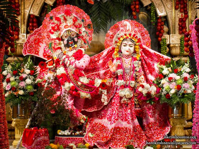 Sri Sri Radha Nilamadhava Wallpaper (011)