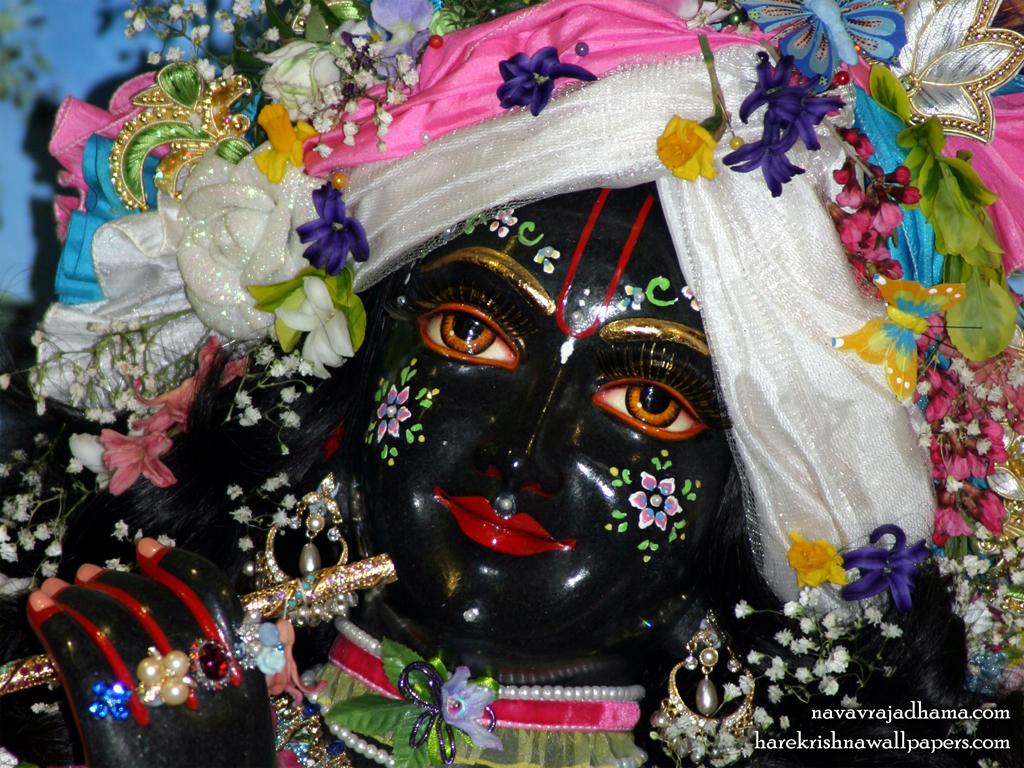 Sri Shyamsundar Close up Wallpaper (013) Size 1024x768 Download