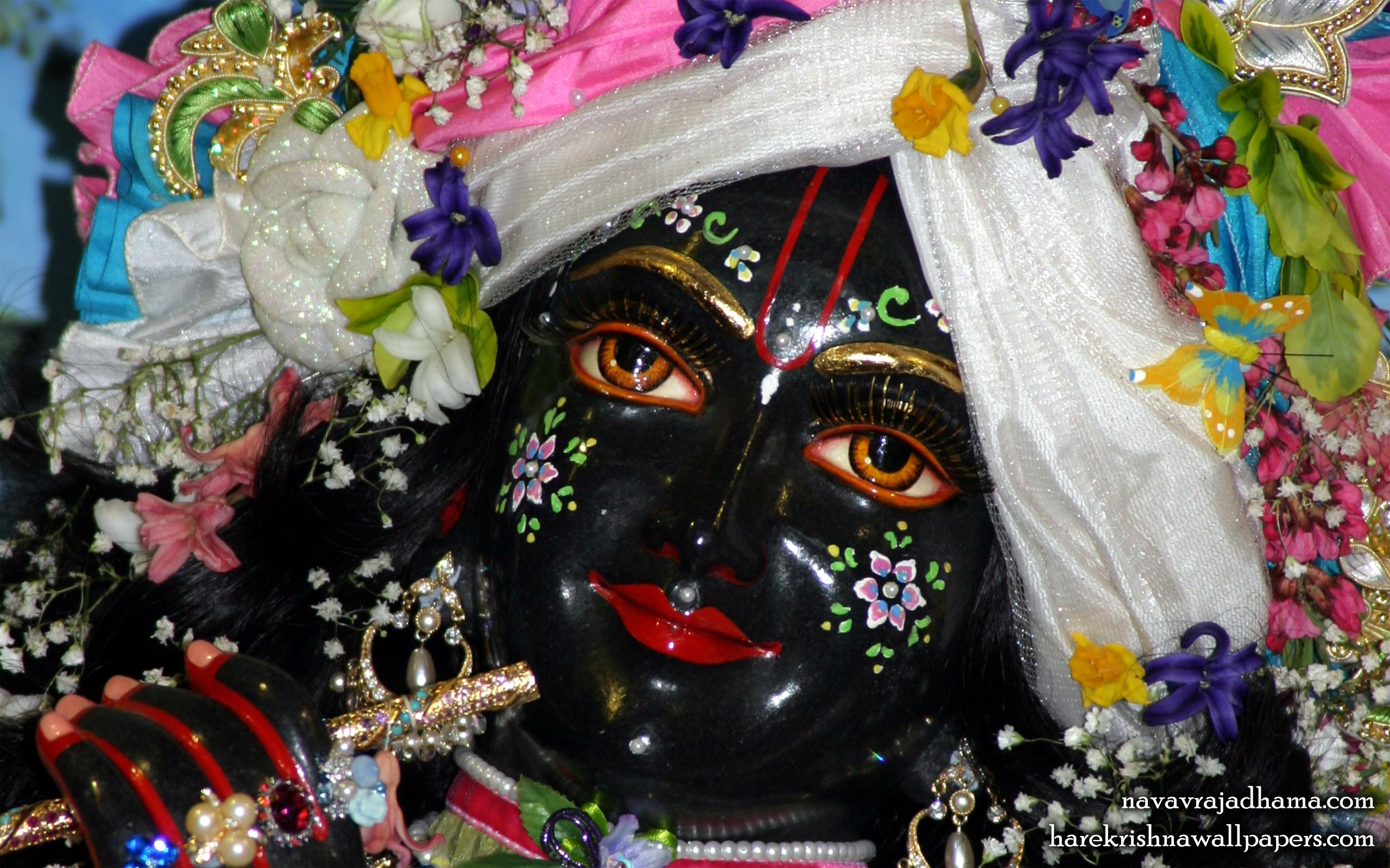 Sri Shyamsundar Close up Wallpaper (013) Size 2560x1600 Download