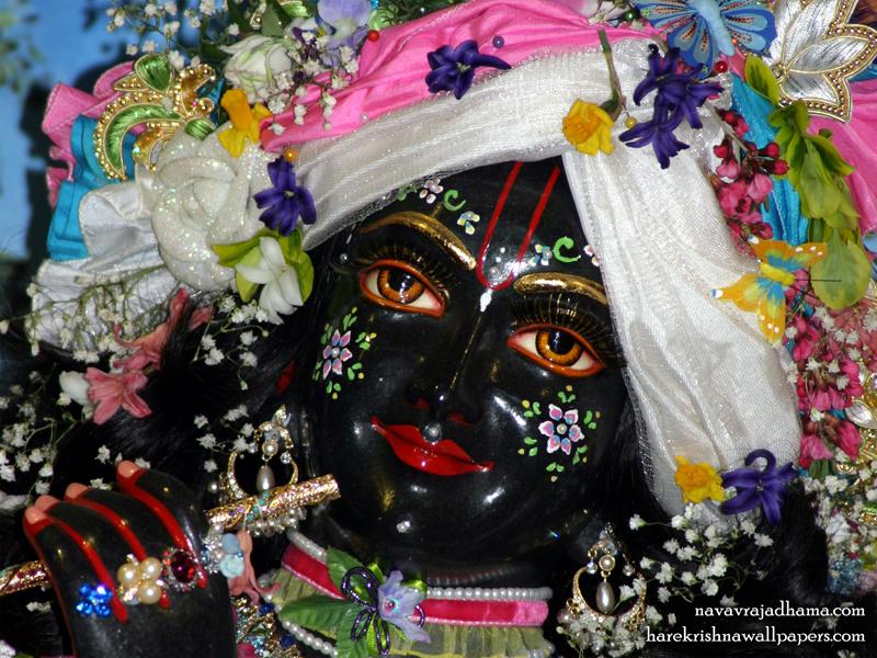 Sri Shyamsundar Close up Wallpaper (013) Size 800x600 Download