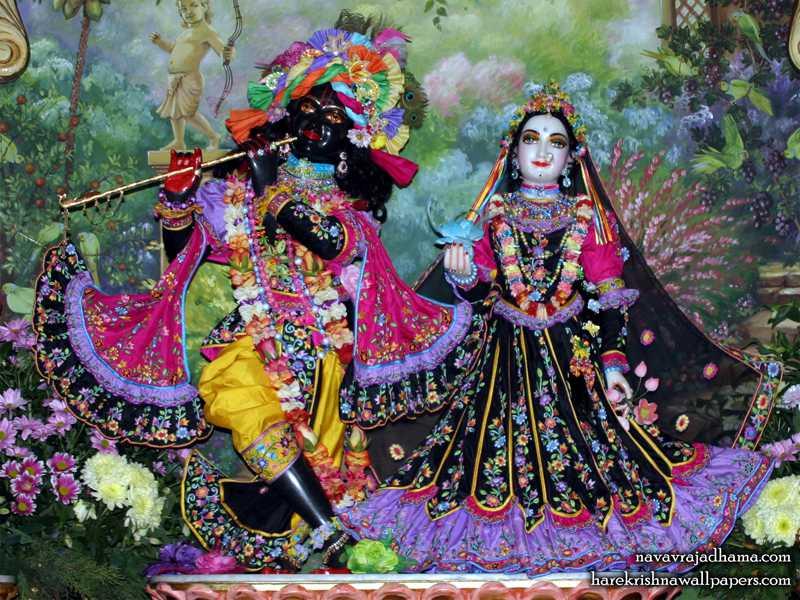 Sri Sri Radha Shyamsundar Wallpaper (022)