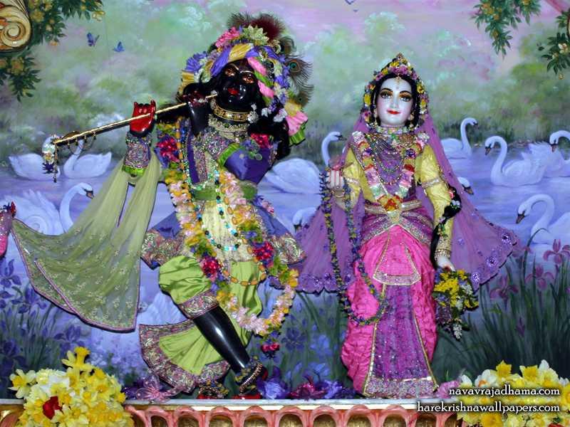 Sri Sri Radha Shyamsundar Wallpaper (028)