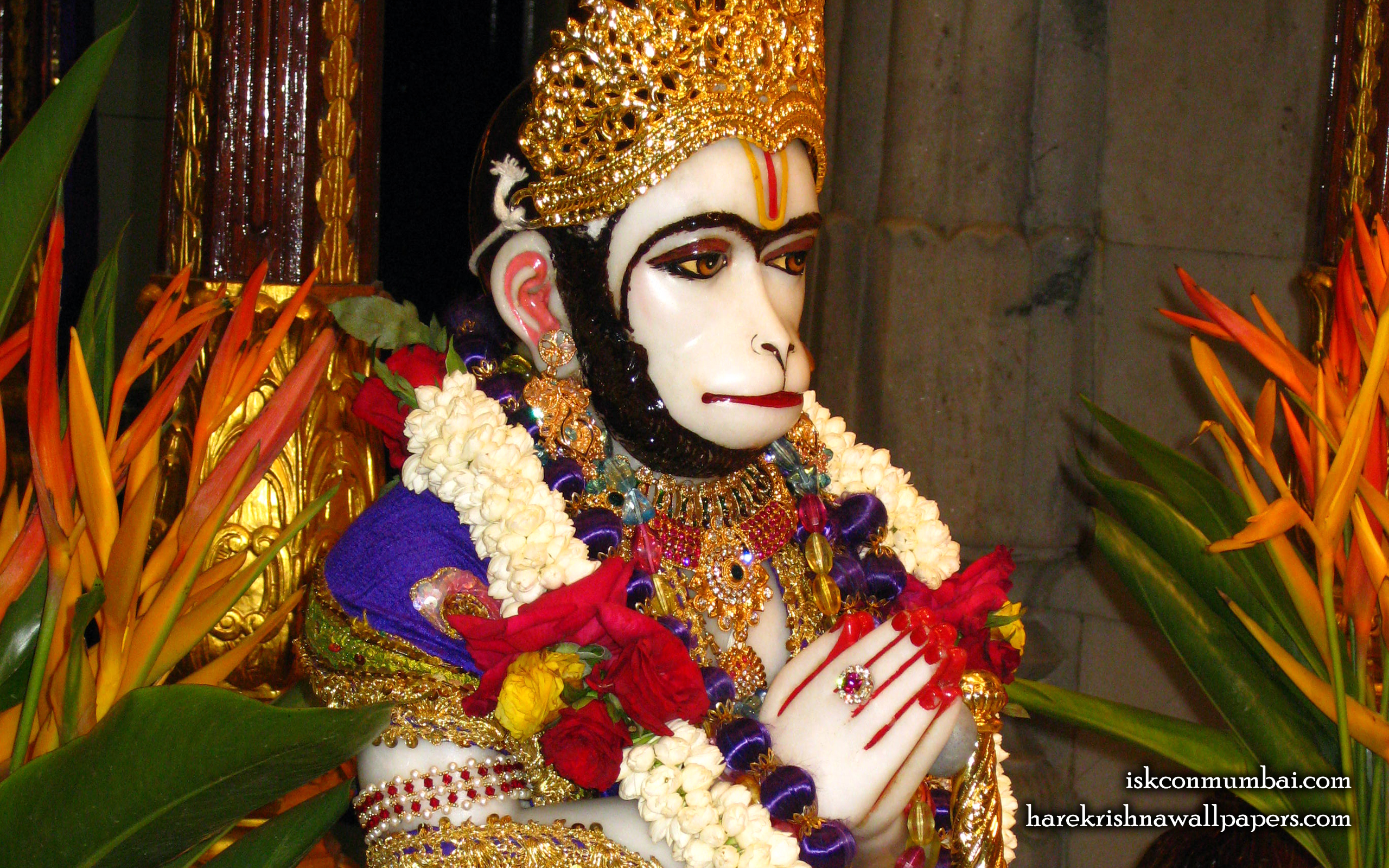 Sri Hanuman Face Wallpaper (001) Size 2560x1600 Download