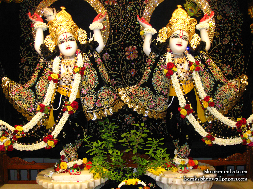 Sri Sri Gaura Nitai Wallpaper (001) Size 1024x768 Download