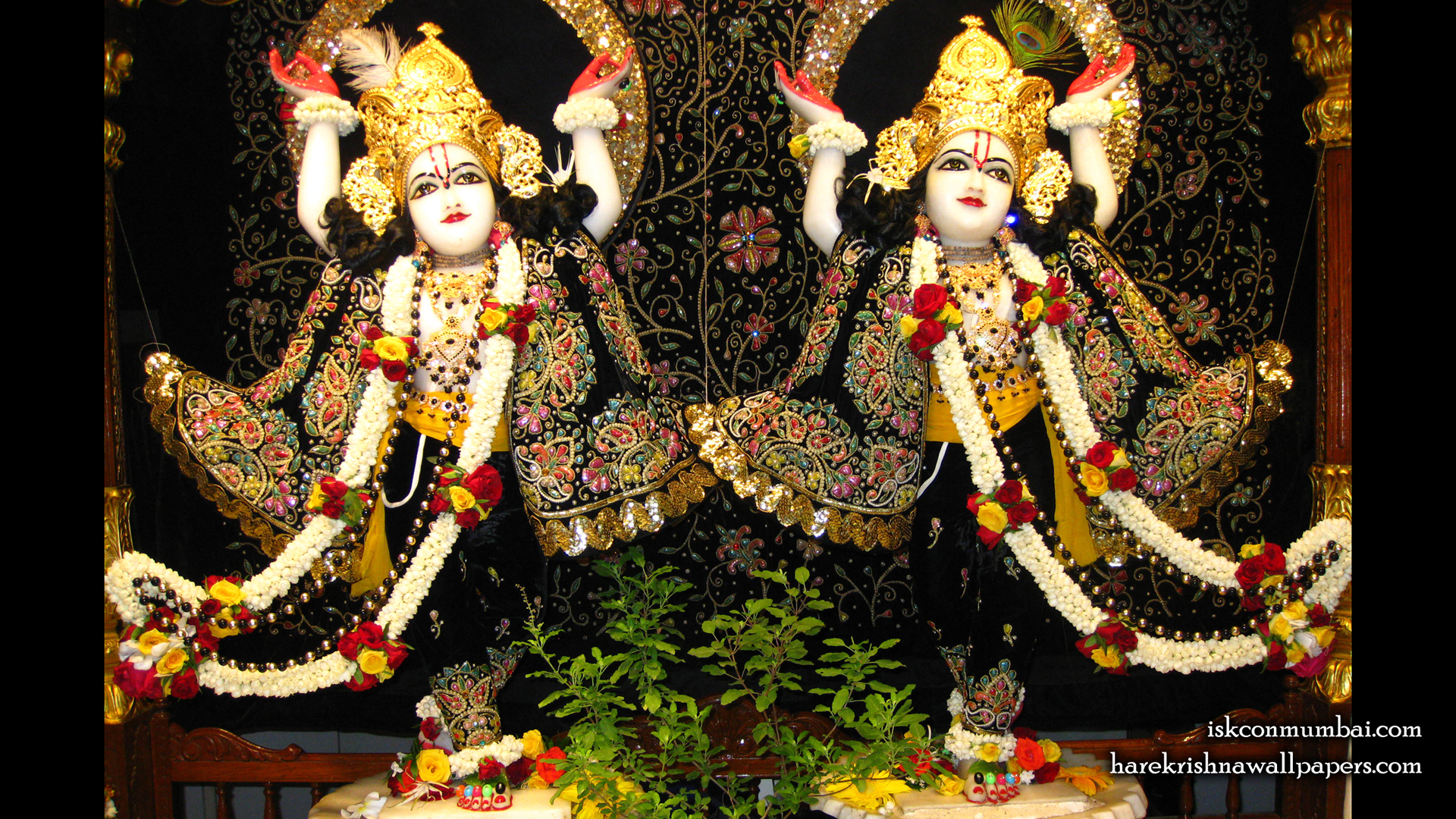 Sri Sri Gaura Nitai Wallpaper (001) Size 1920x1080 Download