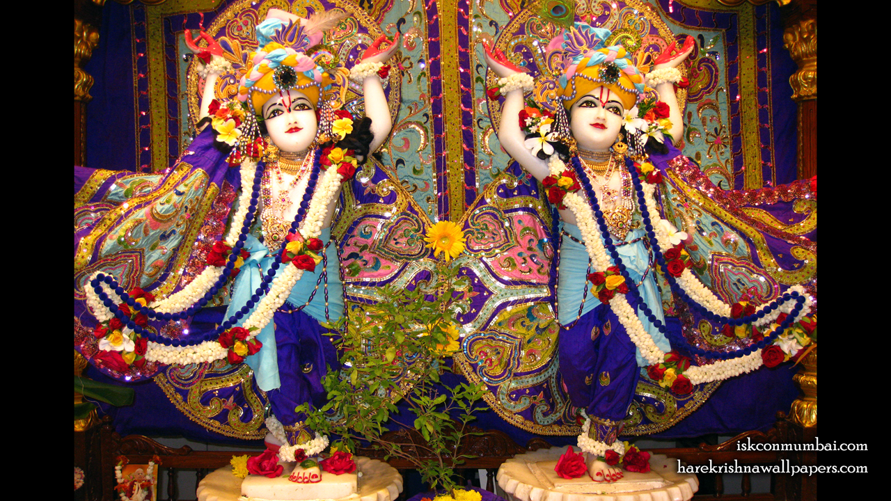 Sri Sri Gaura Nitai Wallpaper (002) Size1280x720 Download