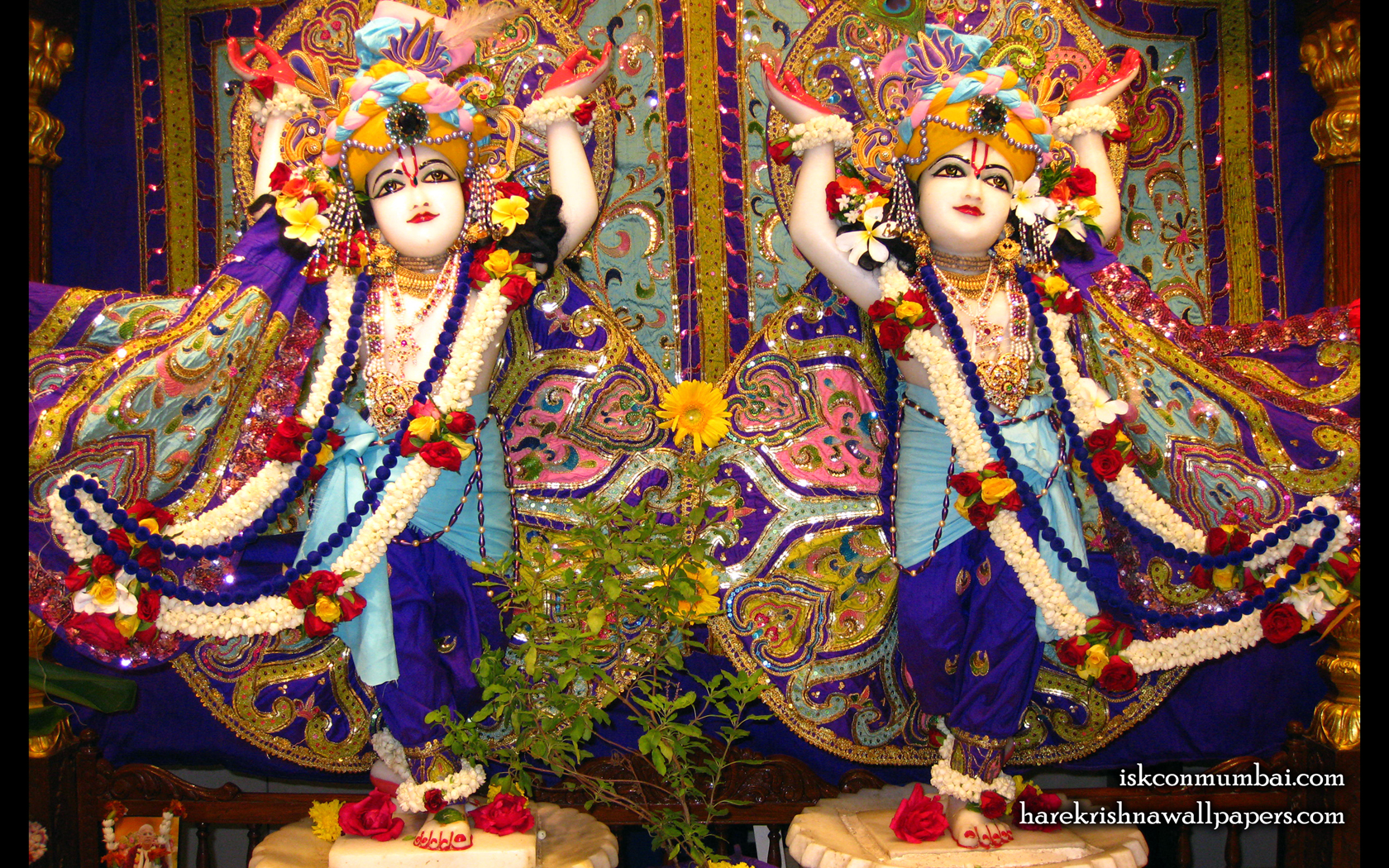 Sri Sri Gaura Nitai Wallpaper (002) Size 1680x1050 Download