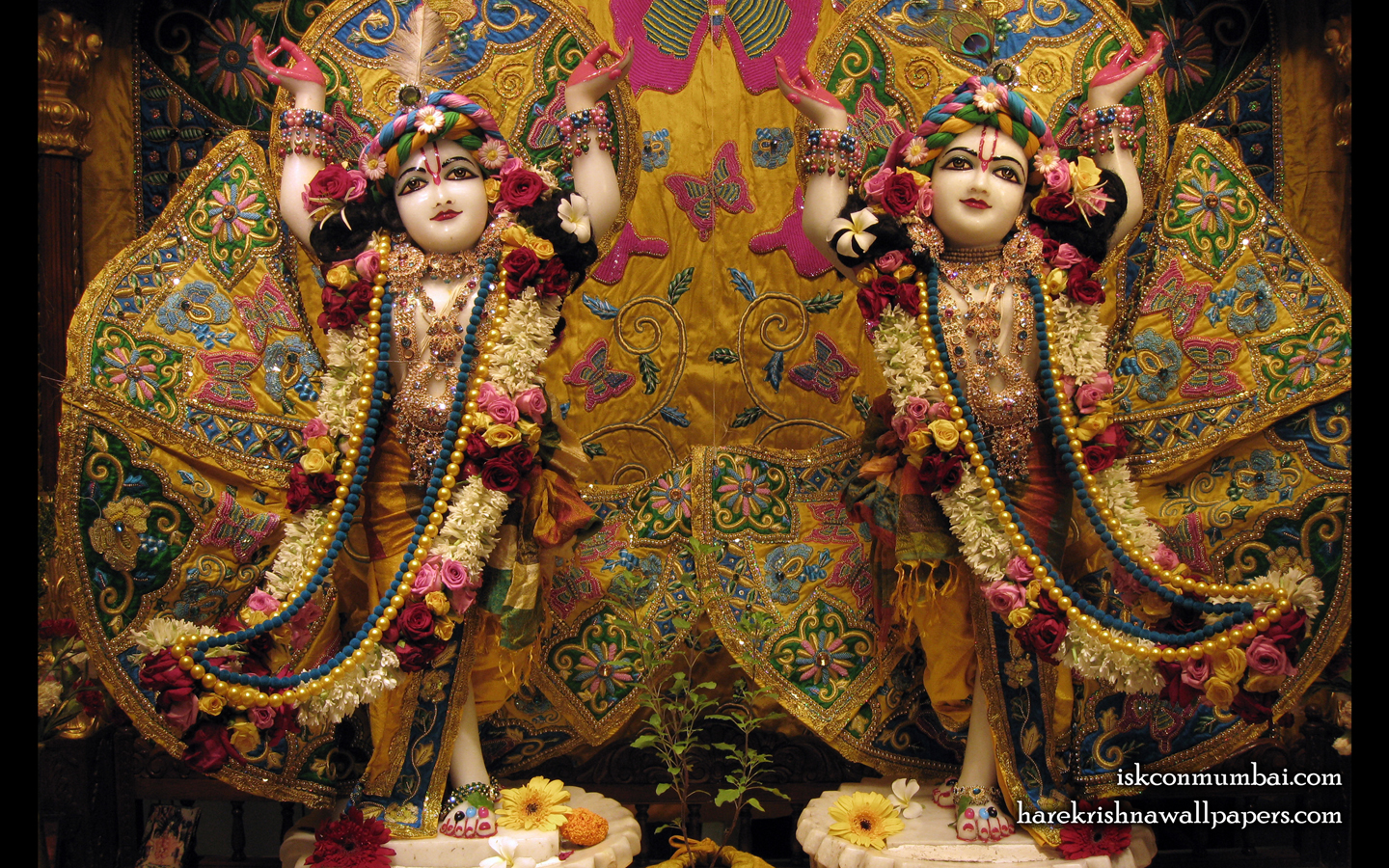 Sri Sri Gaura Nitai Wallpaper (005) Size 1440x900 Download