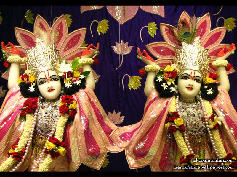 Sri Gaura Nitai Close up Wallpaper (005)