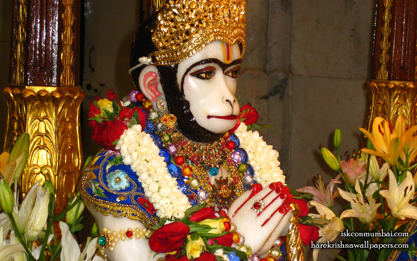 Sri Hanuman Face Wallpaper (009) Size 1440x900 Download