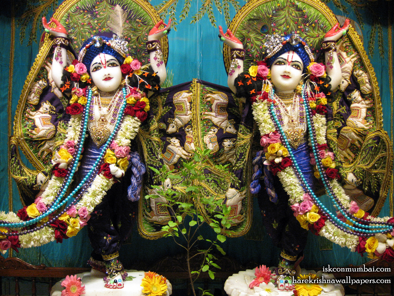 Sri Sri Gaura Nitai Wallpaper (009) Size 1280x960 Download