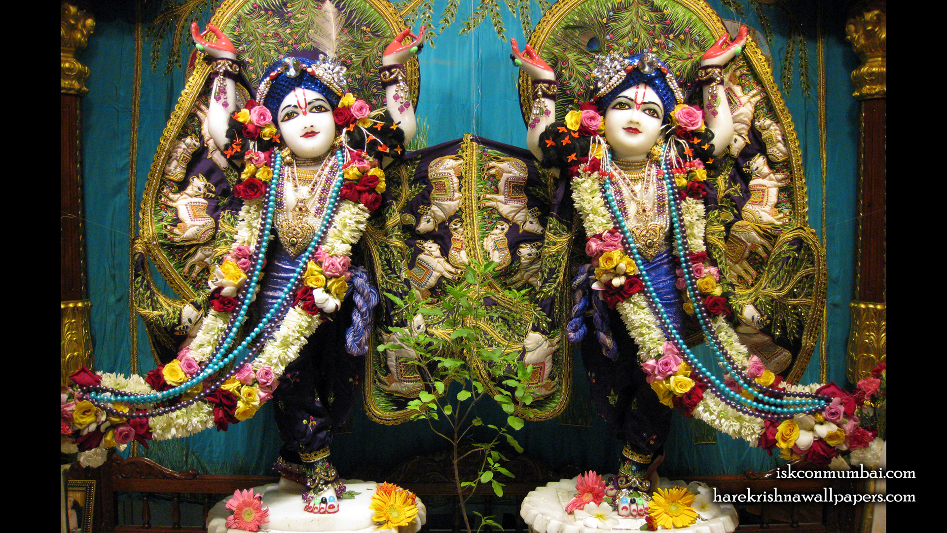 Sri Sri Gaura Nitai Wallpaper (009) Size 1920x1080 Download