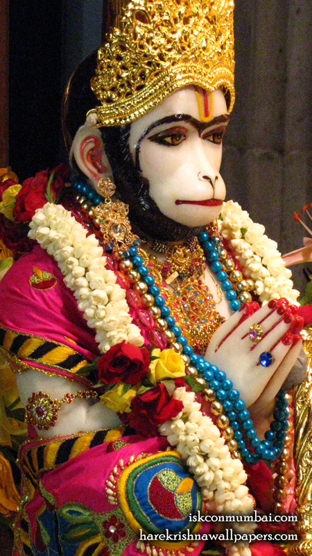 Sri Hanuman Face Wallpaper (010) Size 450x800 Download