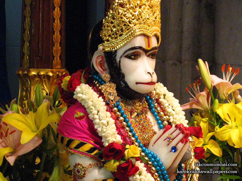 Sri Hanuman Face Wallpaper (010) Size 800x600 Download
