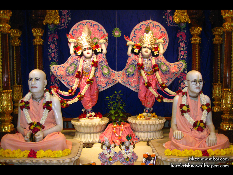 Sri Sri Gaura Nitai Wallpaper (011) Size 800x600 Download