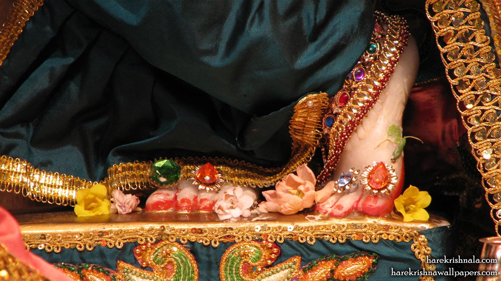 Sri Dwarakadhish Feet Wallpaper (001) Size 1600x900 Download