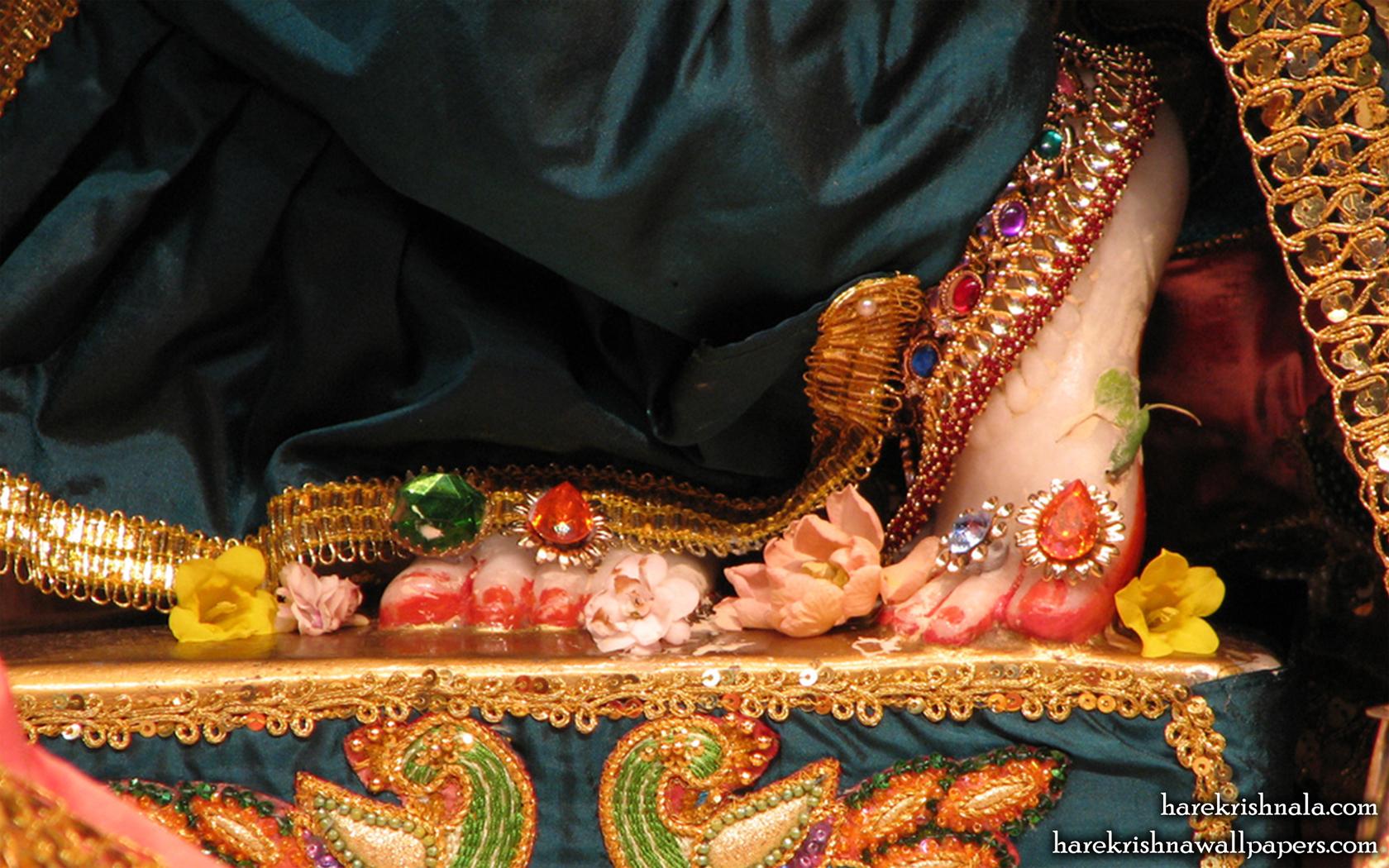 Sri Dwarakadhish Feet Wallpaper (001) Size 1680x1050 Download