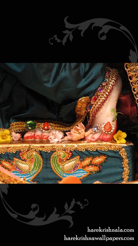 Sri Dwarakadhish Feet Wallpaper (001) Size 450x800 Download
