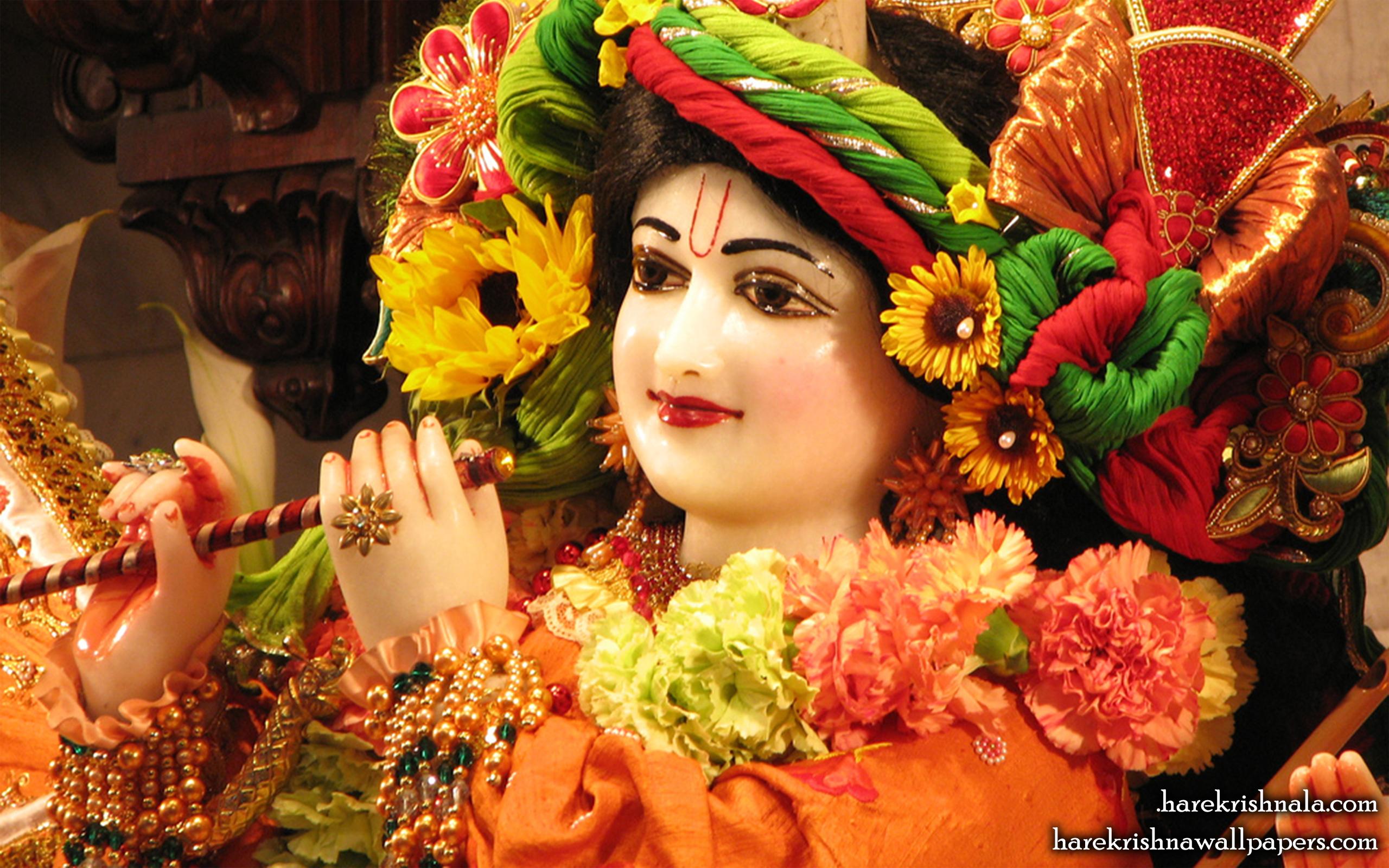 Sri Dwarakadhish Close up Wallpaper (002) Size 2560x1600 Download