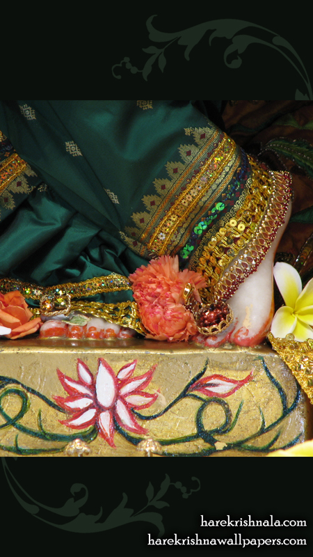 Sri Dwarakadhish Feet Wallpaper (003) Size 450x800 Download