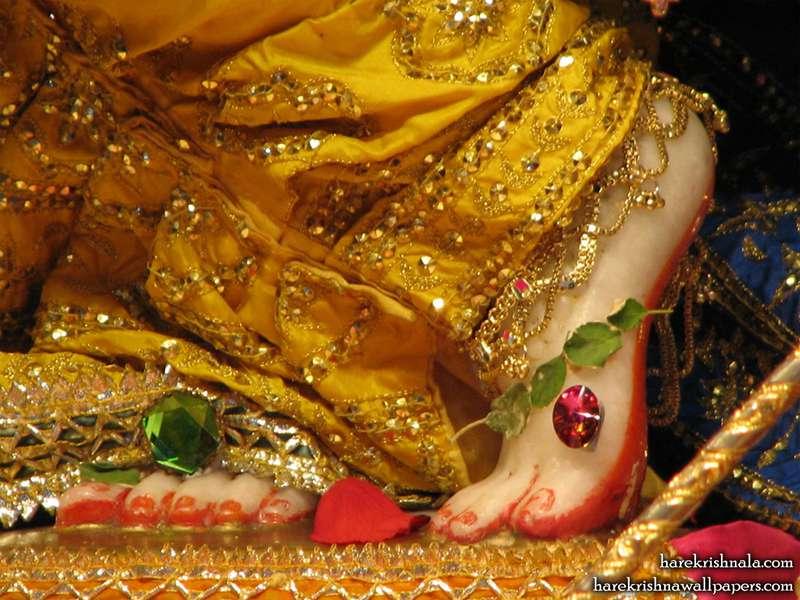Sri Dwarkadhish Feet Wallpaper (004)