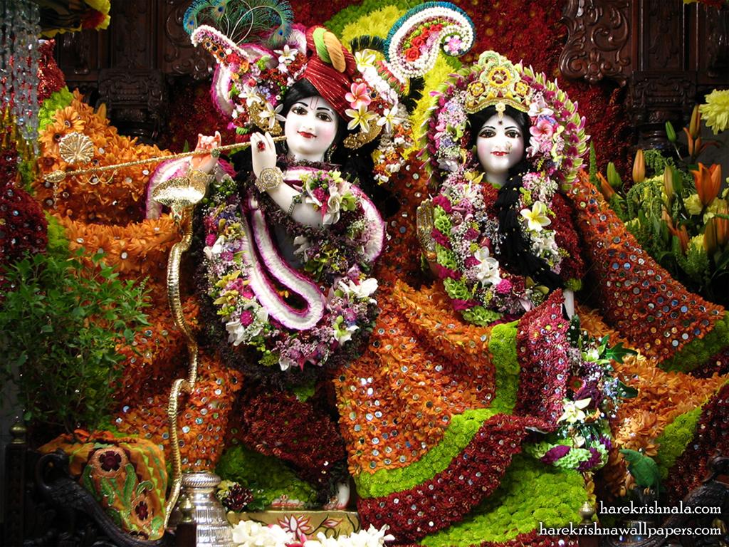 Sri Sri Rukmini Dwarkadhish Wallpaper (006) Size 1024x768 Download