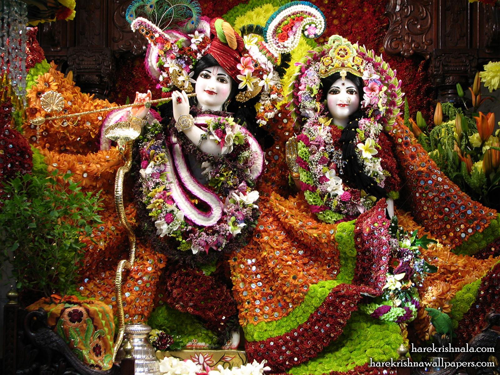 Sri Sri Rukmini Dwarkadhish Wallpaper (006) Size1600x1200 Download