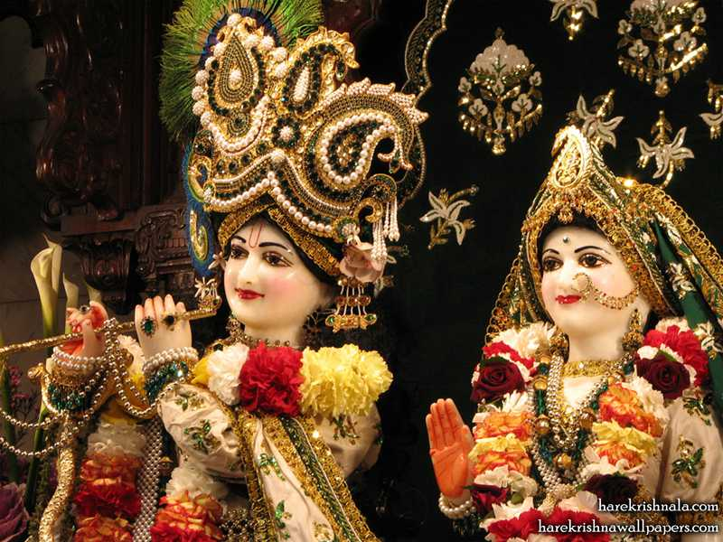 Sri Sri Rukmini Dwarkadhish Close up Wallpaper (010)