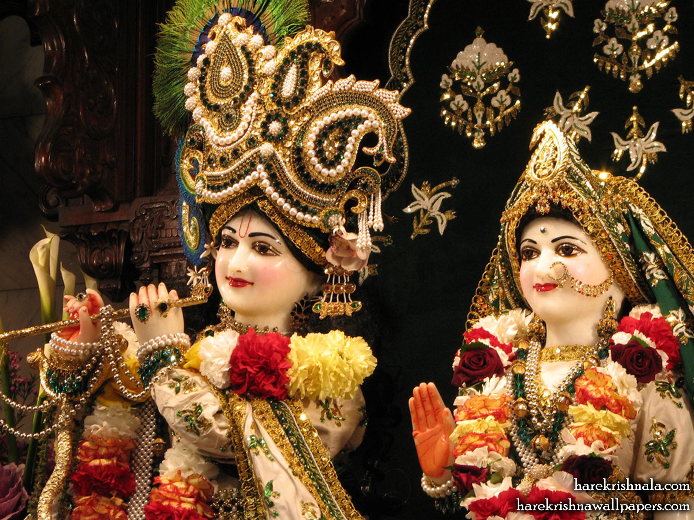 Sri Sri Rukmini Dwarkadhish Close up Wallpaper (010) Size 2400x1800 Download