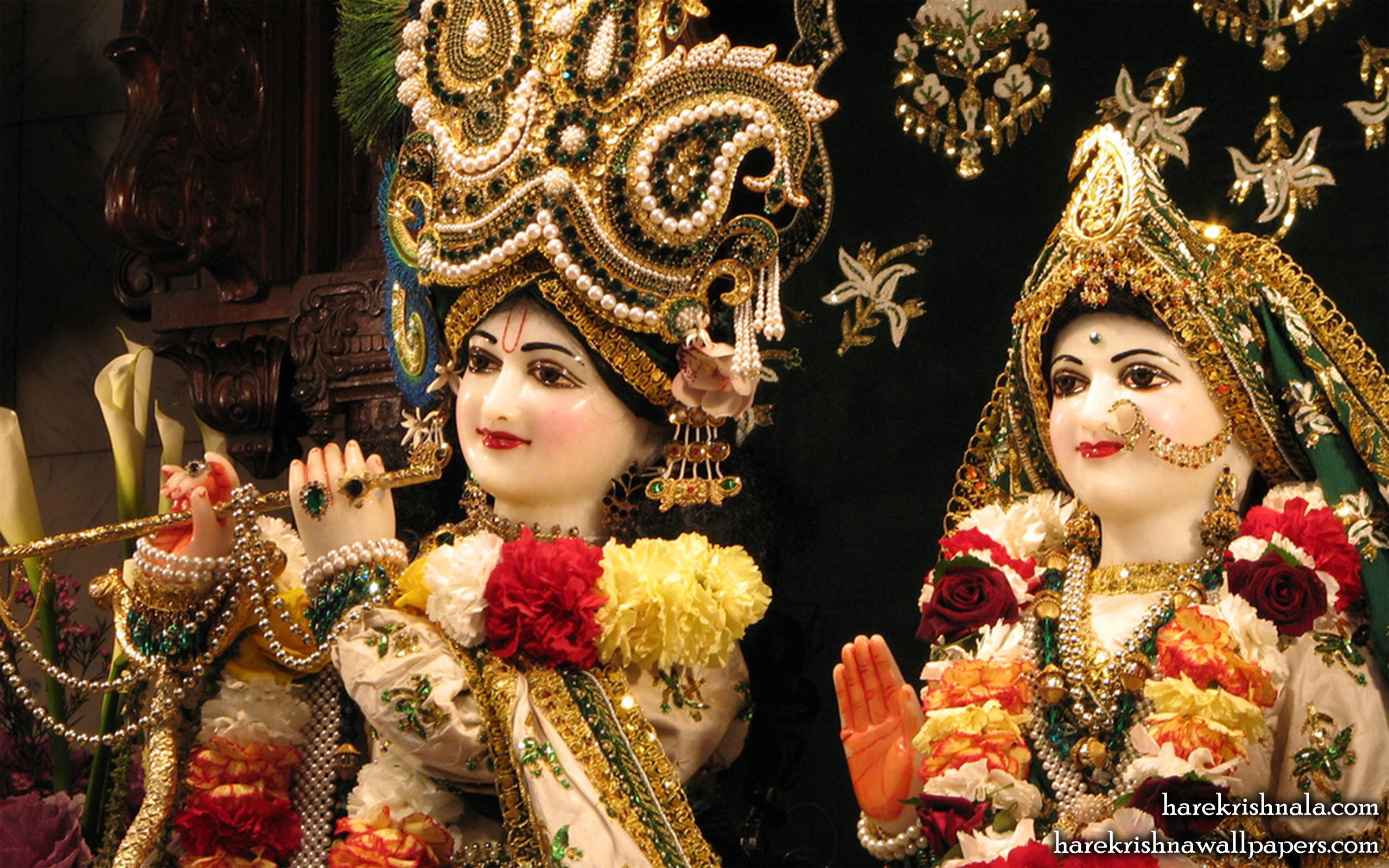 Sri Sri Rukmini Dwarkadhish Close up Wallpaper (010) Size 2560x1600 Download