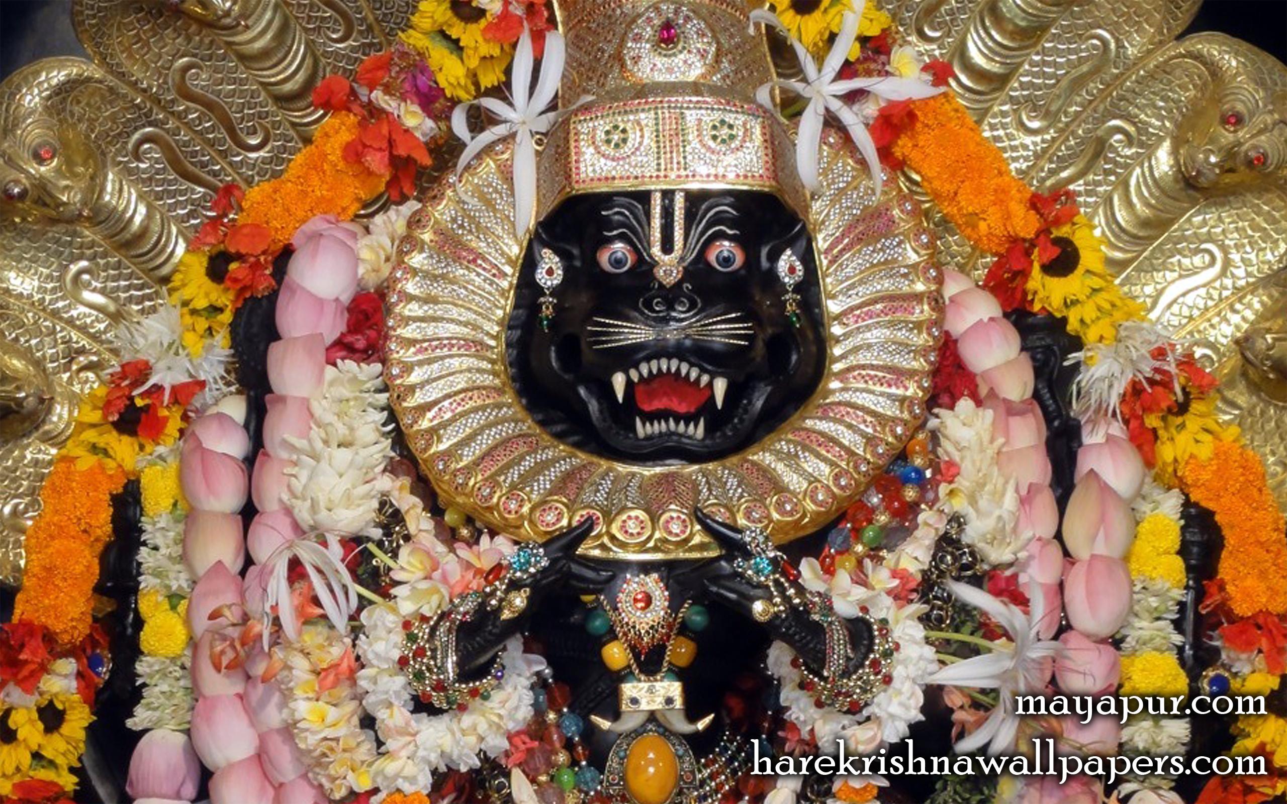 Sri Narasimha Deva Close up Wallpaper (006) Size 2560x1600 Download