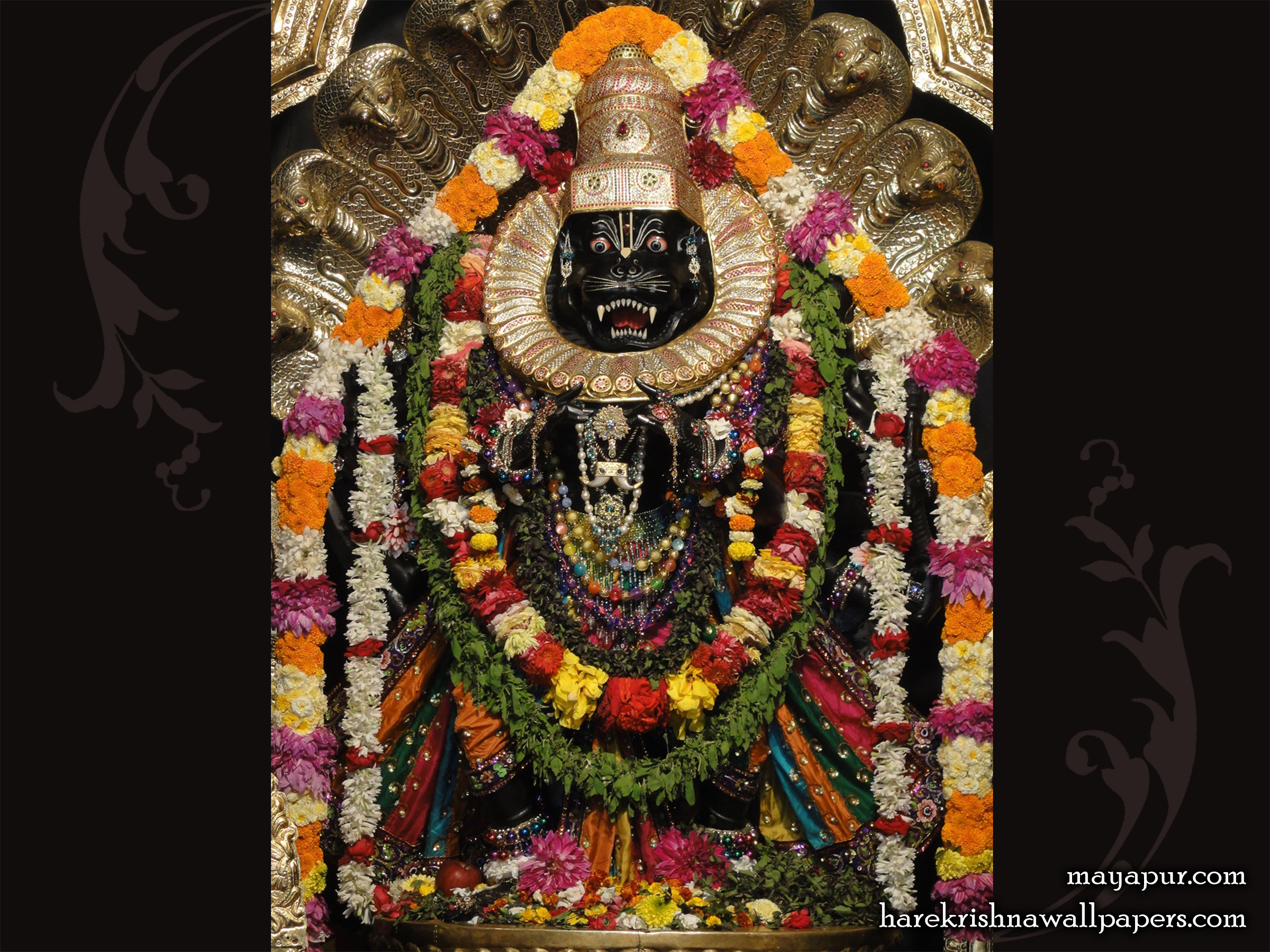 Sri Narasimha Deva Wallpaper (007) Size 2400x1800 Download