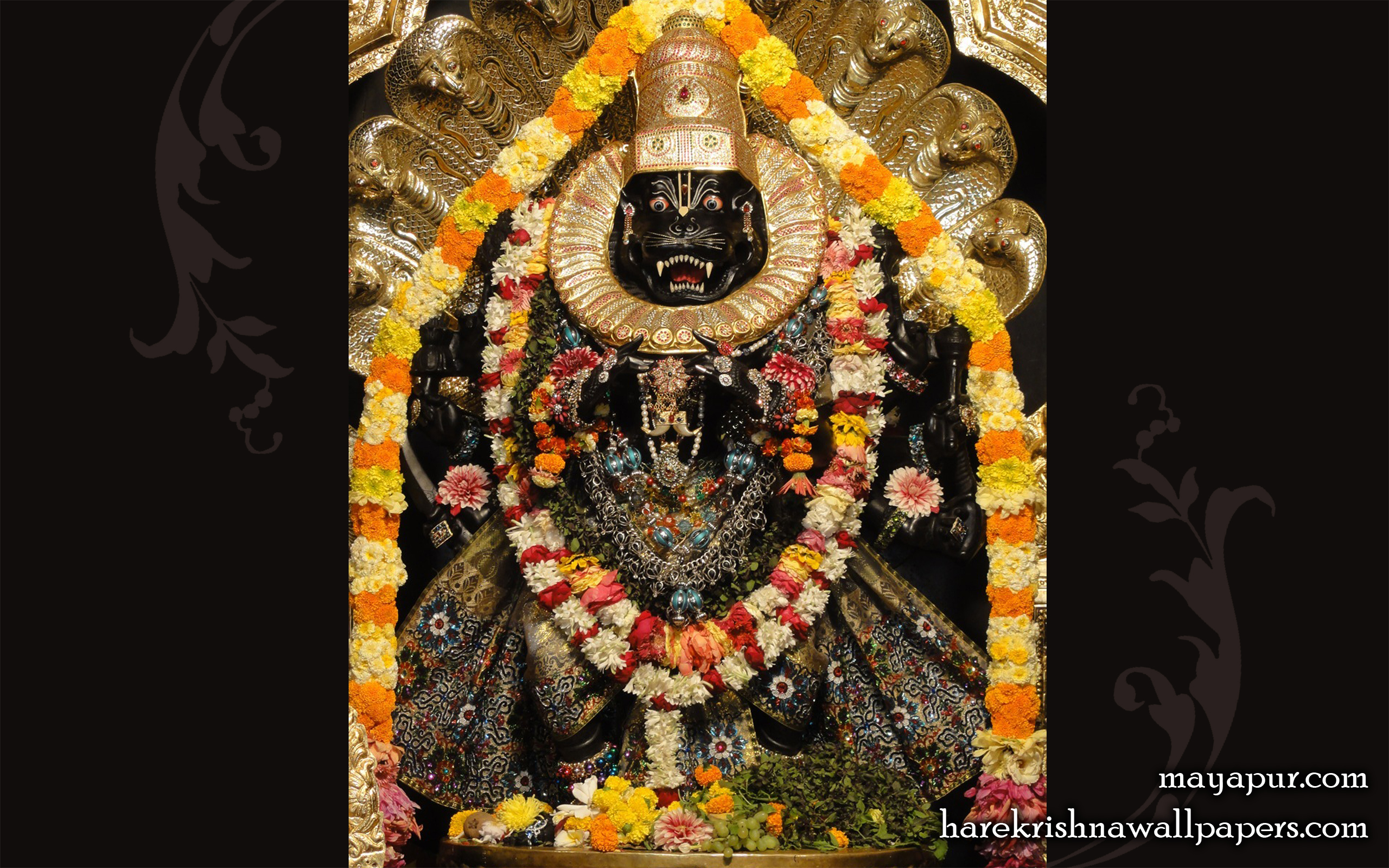 Sri Narasimha Deva Wallpaper (009) Size 2560x1600 Download