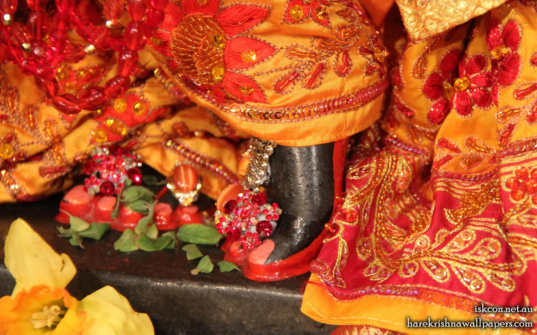 Sri Vallabh Feet Wallpaper (002) Size 1440x900 Download