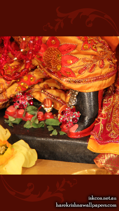 Sri Vallabh Feet Wallpaper (002) Size 450x800 Download