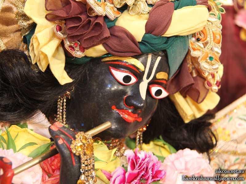 Sri Vallabh Close up Wallpaper (006)